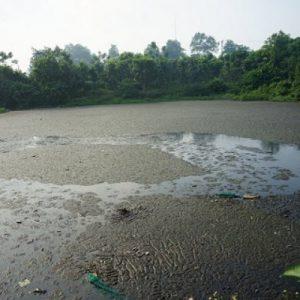 Xả nước thải ra môi trường bị phạt 2 tỷ đồng