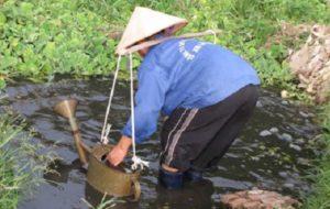 Hà Nội: Hệ thống xử lý nước thải sinh hoạt và những con số biết nói 1
